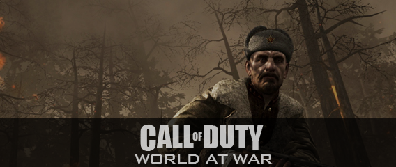 COD WAW Post Image