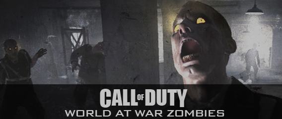 COD WAW Zombies Post Image